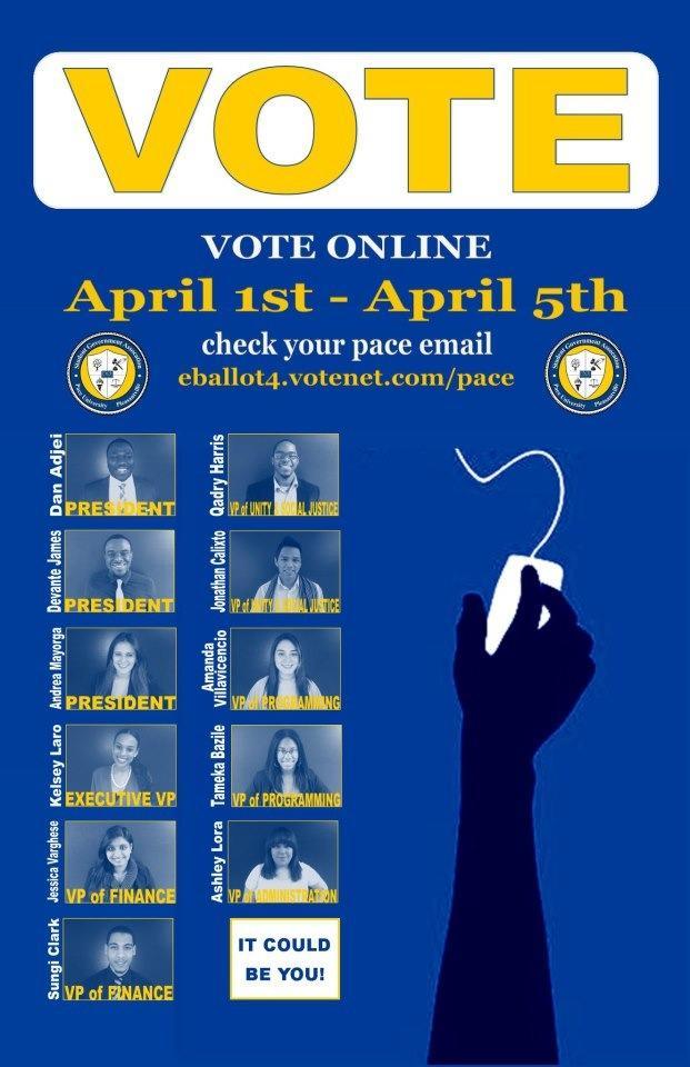 ballotflyer.jpg