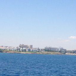 View of Nissi Beach in Aiya Napa